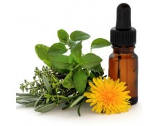 Medicina Natural - Curso online